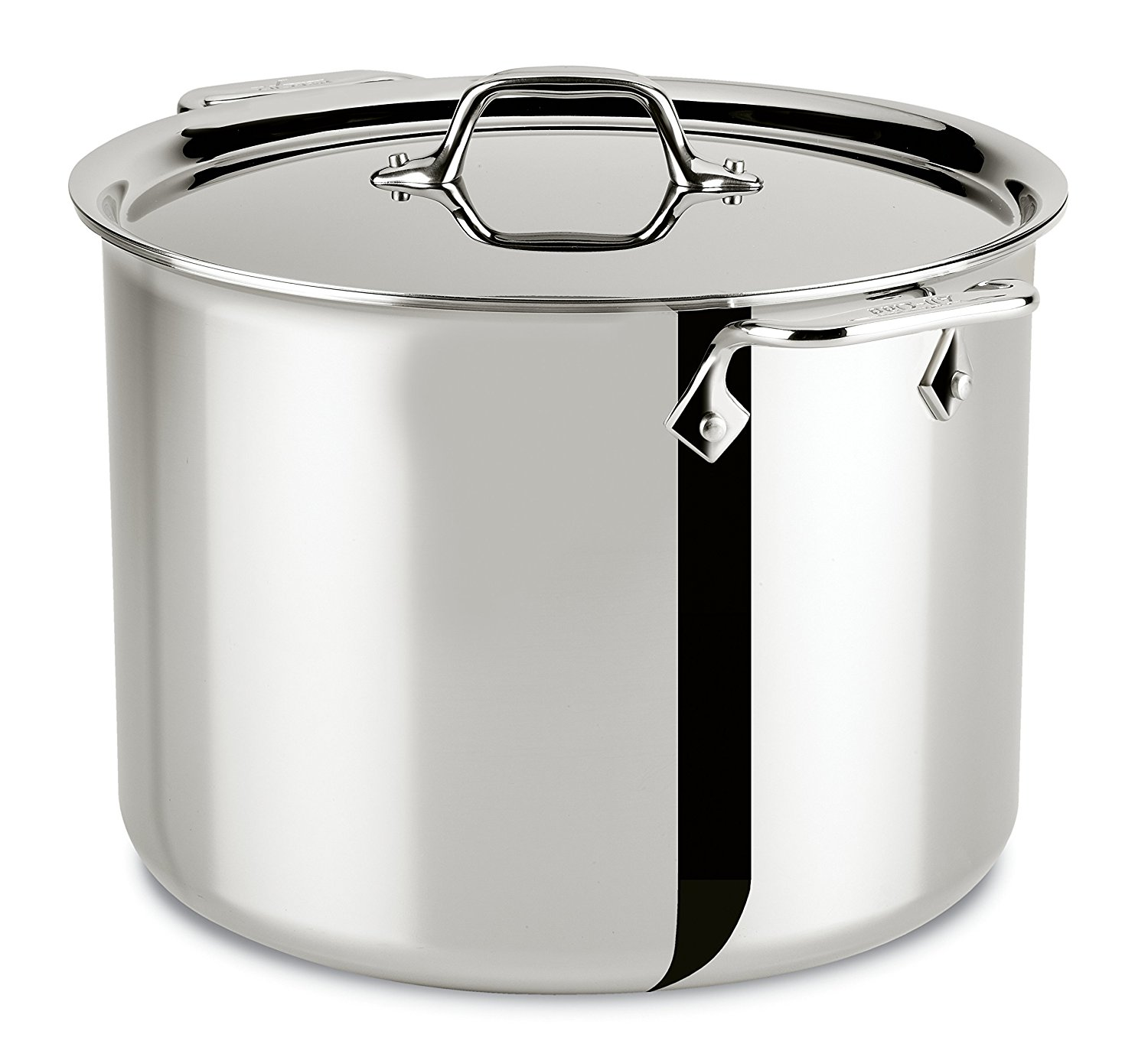 All Clad, stock pot
