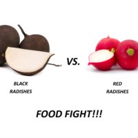 Black vs Red Radish