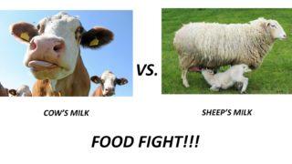 Cow vs Sheep Milk