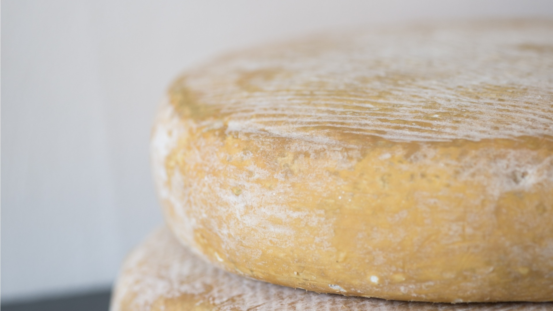 durrus, cows milk, washed rind, irish