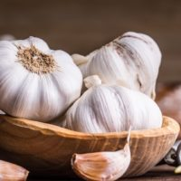 ARCHAEOLOGY OF HERBS & SPICES – Garlic