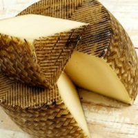 ARCHAEOLOGY OF CHEESE – Manchego