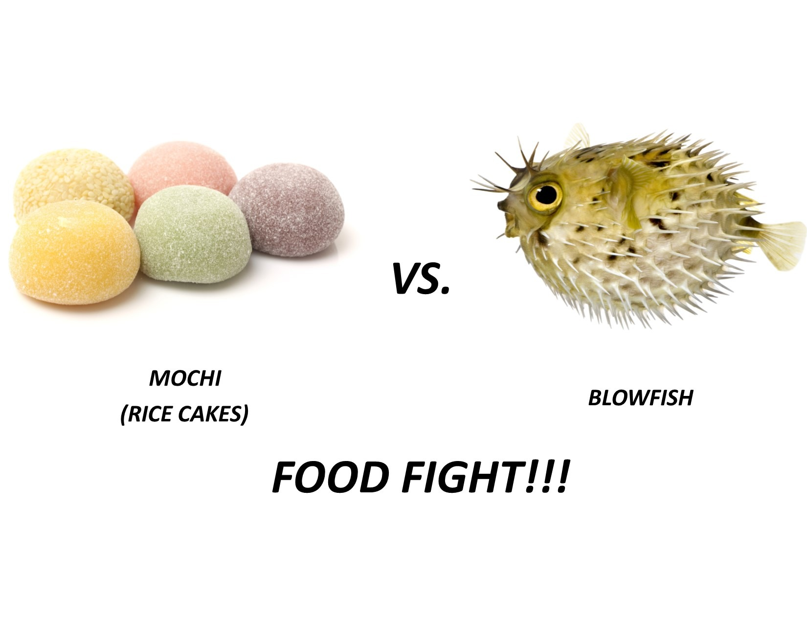 Mochi vs Blowfish