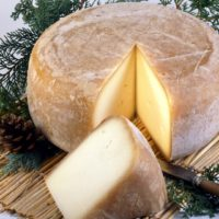 ARCHAEOLOGY OF CHEESE – Ossau-Iraty
