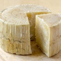 ARCHAEOLOGY OF CHEESE – Pecorino