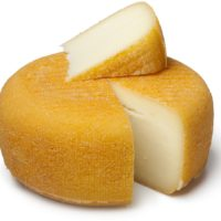 ARCHAEOLOGY OF CHEESE – Port-Salut