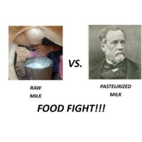 Raw vs Pasteurized Milk