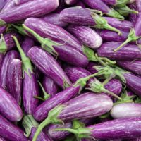 ARCHAEOLOGY OF FRUITS & VEGETABLES – Sicilian Eggplant