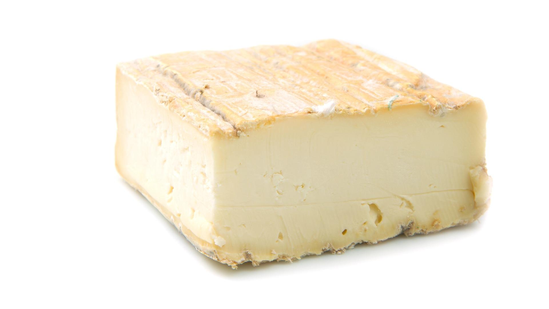 taleggio, cheese, cow, washed rind, italian
