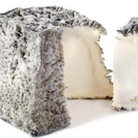 ARCHAEOLOGY OF CHEESE – Valencay
