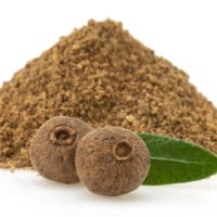ARCHAEOLOGY OF HERBS & SPICES – Allspice (Pimenta)