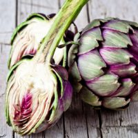 ARCHAEOLOGY OF FRUITS & VEGETABLES – Artichoke