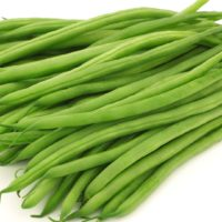 ARCHAEOLOGY OF FRUITS & VEGETABLES – Haricot Vert
