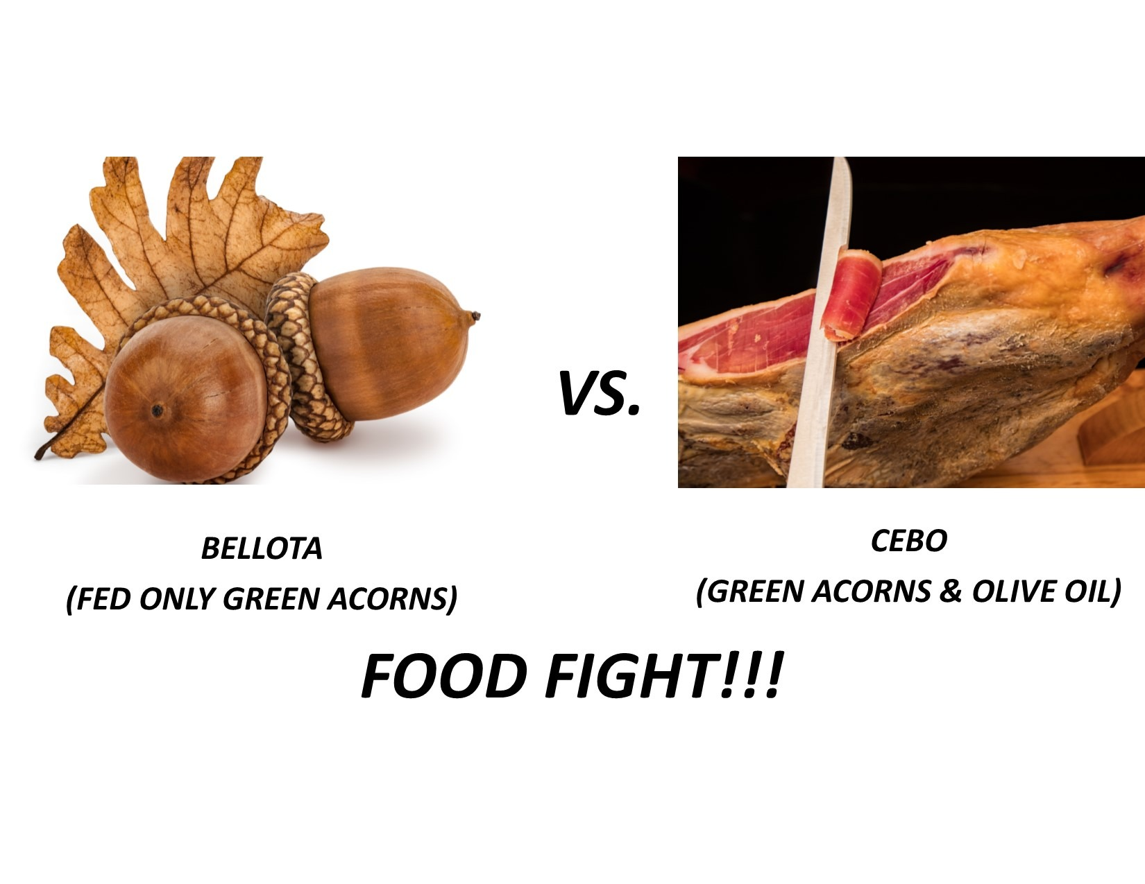 Belota vs Cebo Jamon Iberico