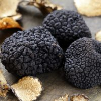 ARCHAEOLOGY OF FRUITS & VEGETABLES – Black Truffle