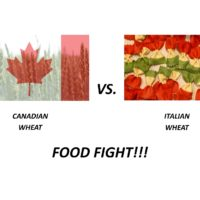 Canadian Wheat v Italian Wheat