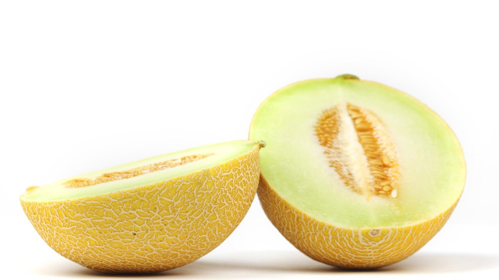 galia melon