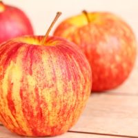 ARCHAEOLOGY OF FRUITS & VEGETABLES – Honeycrisp Apple