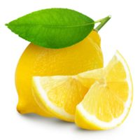 ARCHAEOLOGY OF FRUITS & VEGETABLES – Meyer Lemon