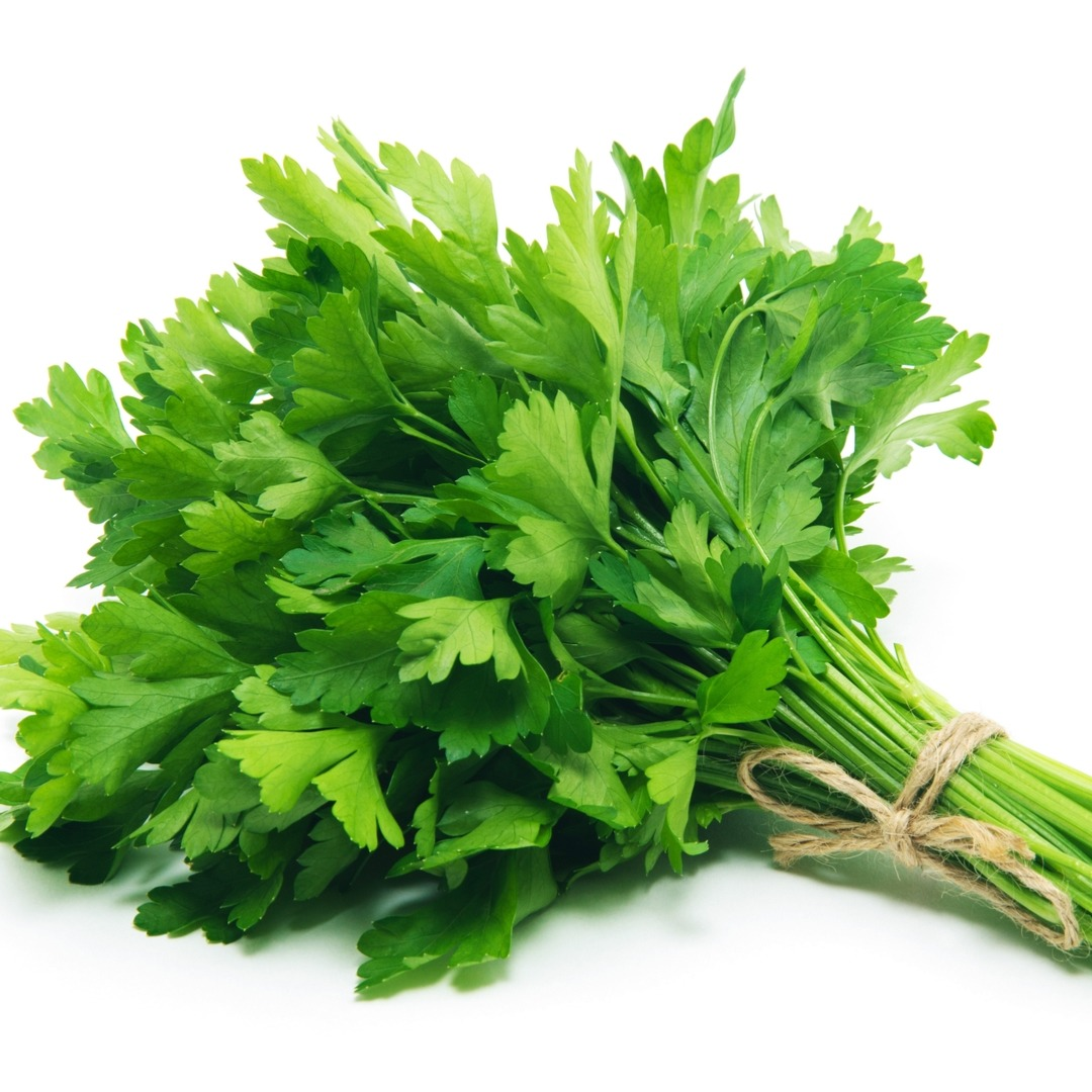 parsley, fresh, herb