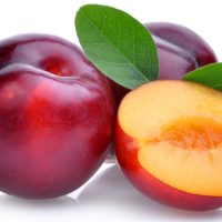 ARCHAEOLOGY OF FRUITS & VEGETABLES – Plum