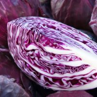 ARCHAEOLOGY OF FRUITS & VEGETABLES – Red Cabbage
