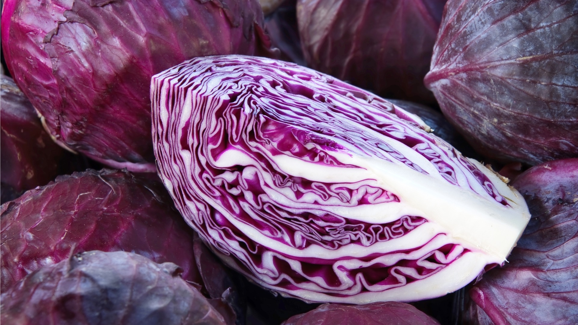 Archaeology Of Fruits Vegetables Red Cabbage Chef S Mandala