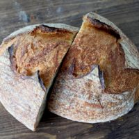 ARCHAEOLOGY OF BREAD – Sourdough