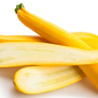 ARCHAEOLOGY OF FRUITS & VEGETABLES – Yellow Squash