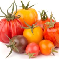 ARCHAEOLOGY OF FRUITS & VEGETABLES – Heirloom Tomato