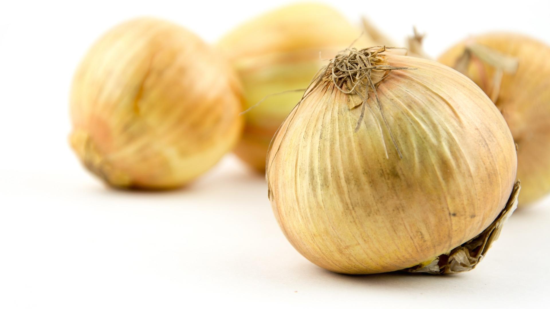 Vidalia, onion