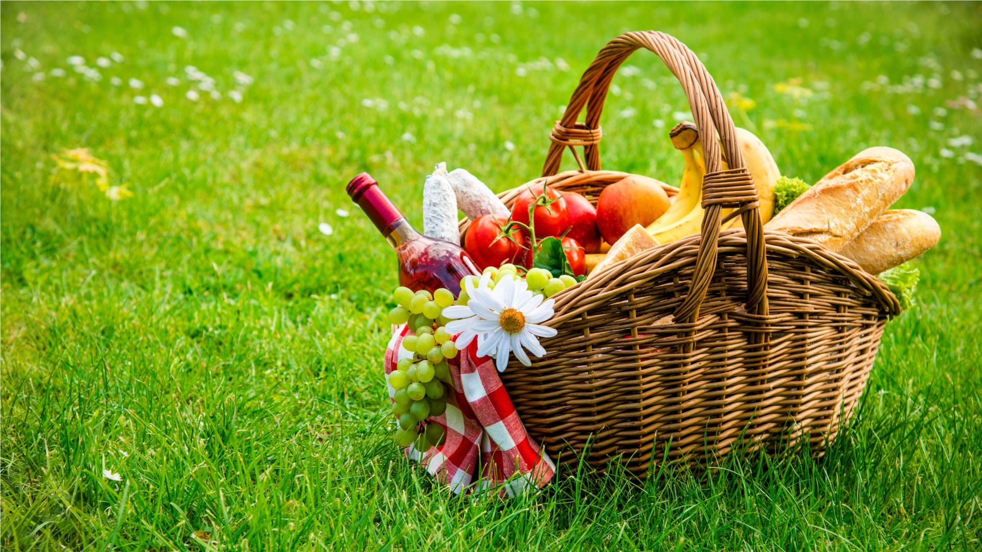 Picnic food basket