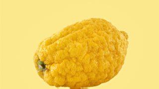 citron, citrus
